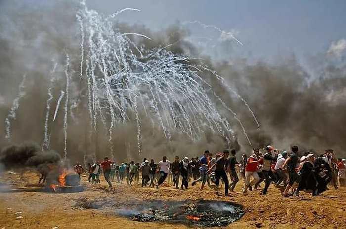 Израиль - террористическое государство. Политика, Сектор Газа, Палестино-Израильский конфликт, Израиль, США, Палестина, Терроризм, Эрдоган, Длиннопост