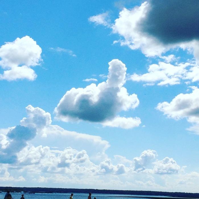 Прогноз обещал дожди, но я до последнего верил, что солнце будет весь день, пока не взглянул на небо! Прогноз, Незамысловатые облака