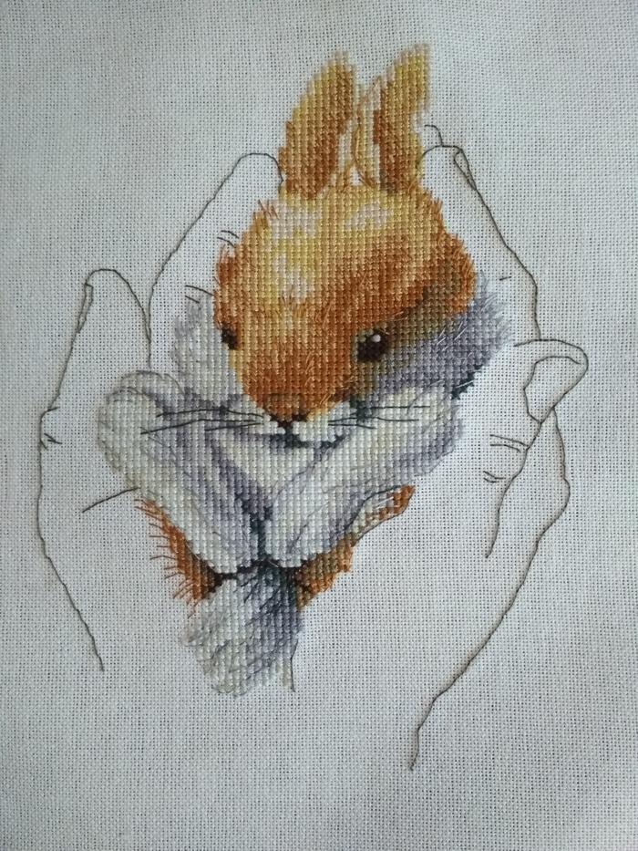 Тепло в ладонях Вышивка крестом, Кролик, Моё, Длиннопост