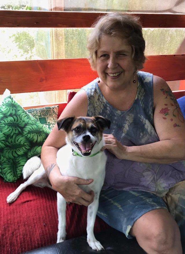 Как женщины спасли собак, бежавших от извержения вулкана Гавайи, собака, спасение, вулкан, длиннопост