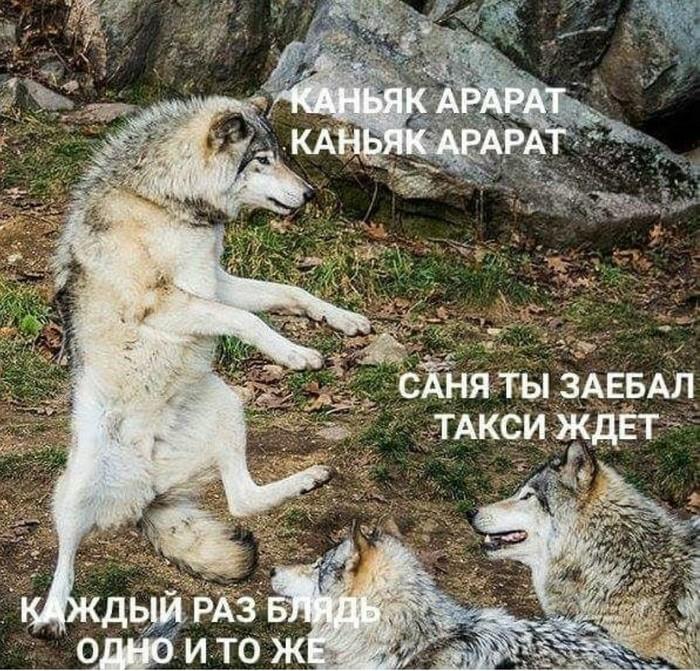 https://cs10.pikabu.ru/post_img/2018/05/22/7/1526984935174419102.jpg