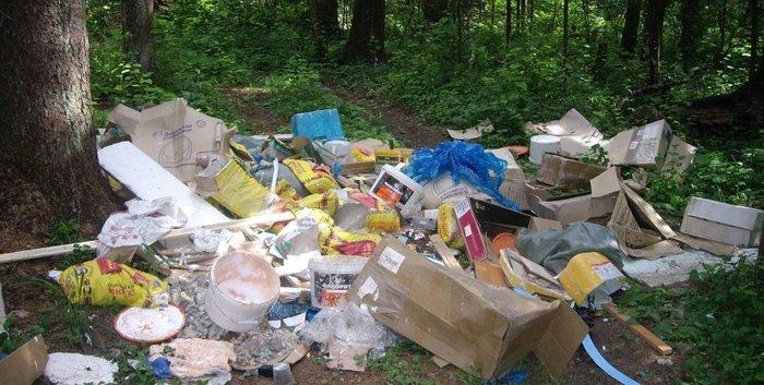 """ФГИС """"Наша природа"""". Боремся с мусором в лесу методами ЛЛ. Свалка, Лес, Природа, Государство, Чистота, Чистомен, Минприроды, Длиннопост"""