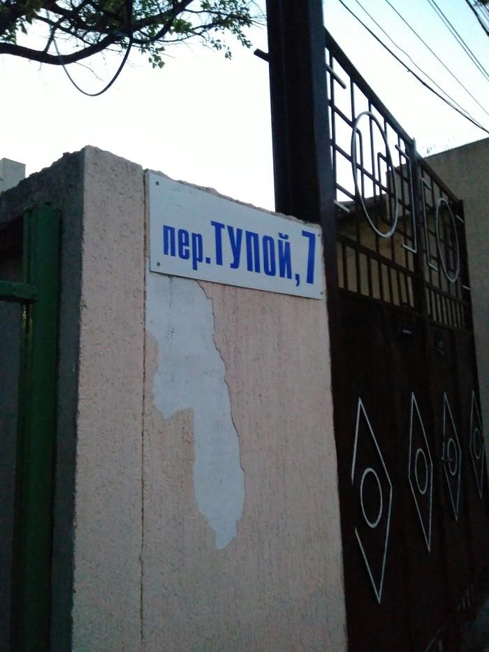 Тупой Сессия, Юмор, Учеба, Адрес, Табличка, Тупые