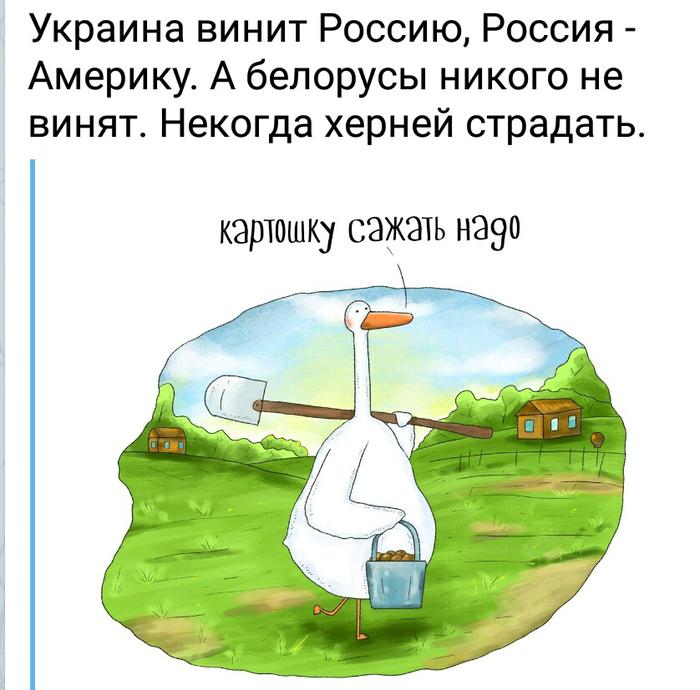 Некогда фигнёй страдать Юмор, Украина, Россия, Белорусы