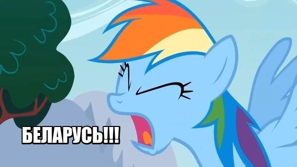 Коротко о спорах с белорусами Белорусы, Русский язык, Длиннопост, My little pony
