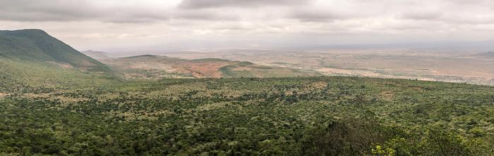 Африканское сафари. Как туда попасть и кого можно увидеть. Часть 1 Путешествия, Сафари, Фотография, Длиннопост, Африка, Кения, Туризм