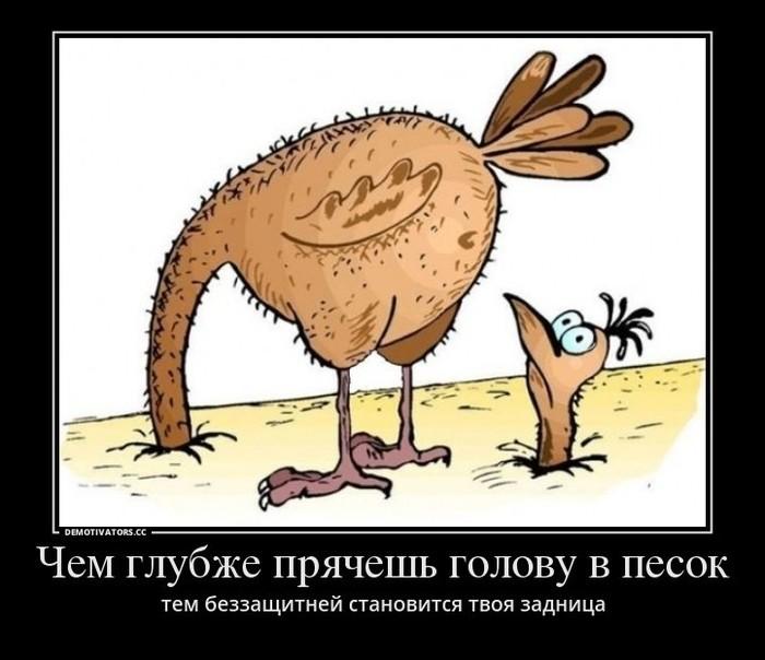 Медведев добавил детей- сирот в чёрный список. Политика, Из сети, Дмитрий Медведев, Сироты