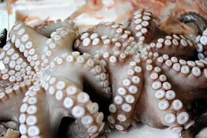 Кореянка съела сырого кальмара и «оплодотворилась» Азиаты, Беременность, Кальмар, Корея
