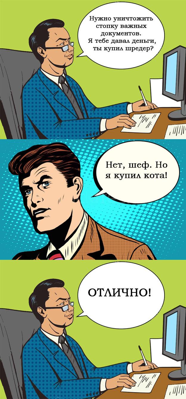 Рыжий Шредер Кот, Шредер, Офис, Гифка с предысторией, Гифка, Длиннопост