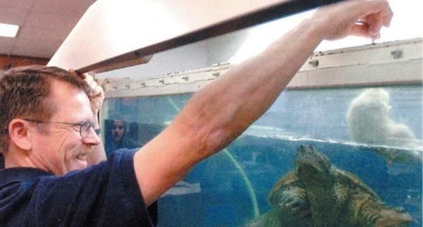 Учитель биологии скормил щенка черепахе на глазах у школьников США, педагогика, учитель, Учитель биологии, защита животных