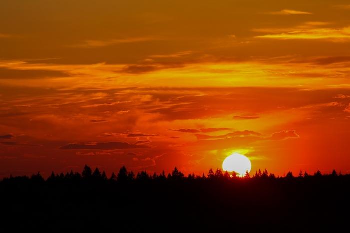 Закат над Лосиным Островом Фотография, Закат, Солнце, Балашиха, Вечер, Лосиный остров