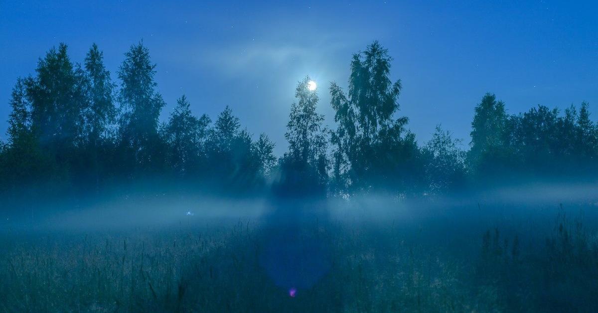 коттедж туман ночью картинки примерным