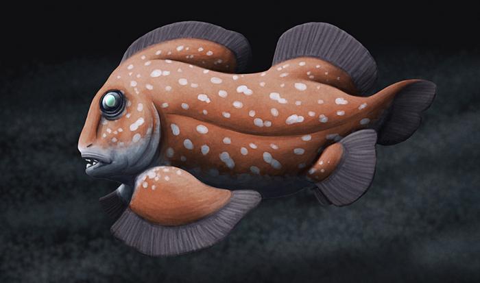 Belantsea - вымерший родственник акул Длиннопост, Палеонтология, Интересное, Познавательно, Рыба, Акула