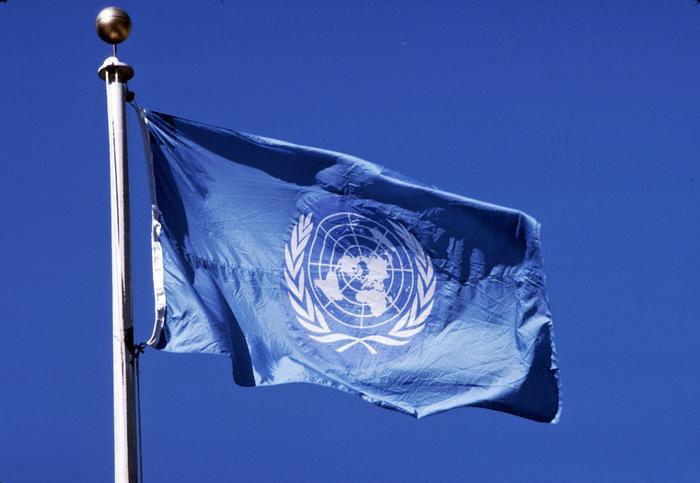 ООН признала вину Киева за большинство жертв войны в Донбассе. Украина, Донбасс, ООН, Политика, Доклад
