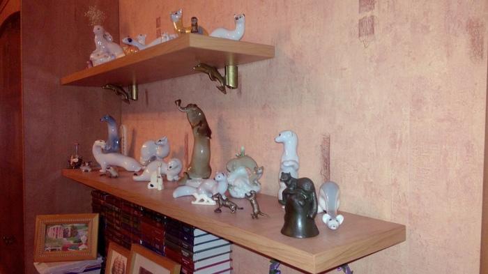 Моя коллекция куньих. Коллекция, Горностай, Ласка, Хорек, Соболь, Куница, Колонок, Выдра, Длиннопост