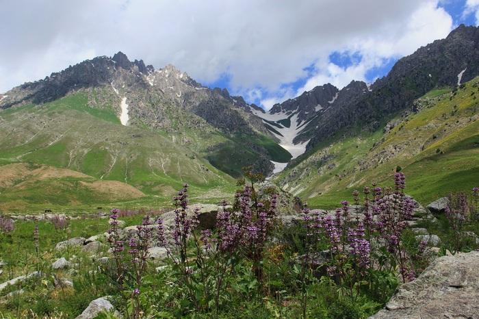 Ходжа Оби Гарм. Вид на Воробьиный перевал Перевал, Снег, Природа, Таджикистан