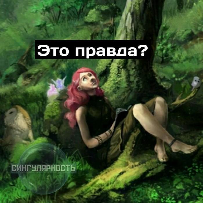 https://cs10.pikabu.ru/post_img/2018/06/27/9/1530114971189191624.jpg