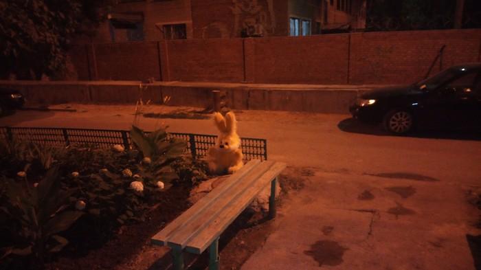 Криповый заяц Заяц, Крипота