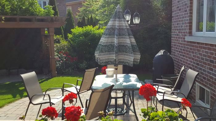 Мой дворик Цветы, Клумба, Двор, Лето, Хорошее настроение