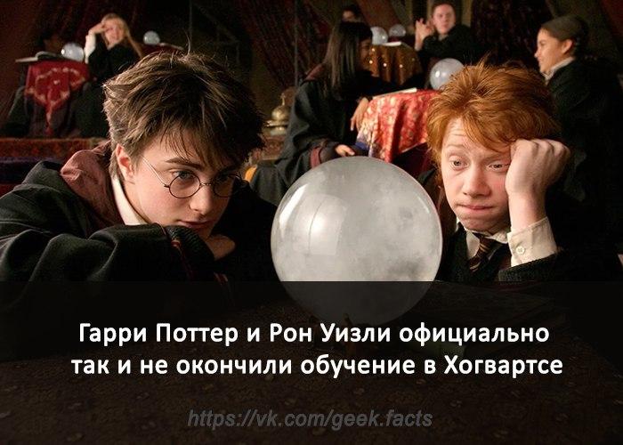 Гарри и Рон не закончили школу. Гарри Поттер, Рон Уизли, Хогвартс