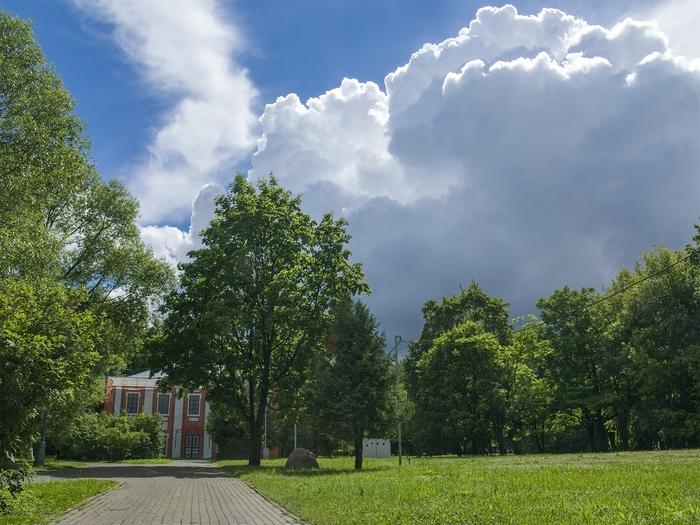 В Воронцовском парке. Москва, Воронцовский парк, Парк, Фотография, Лето, Облака, Длиннопост