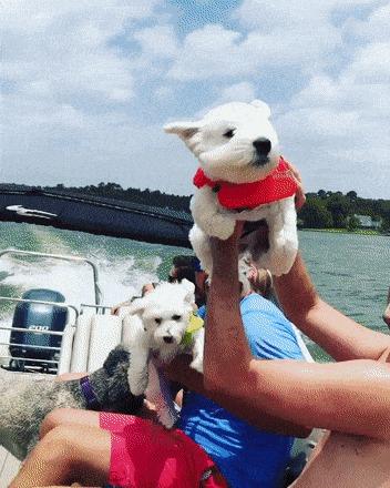 Мы летим? Нет, плывём! Уииии!