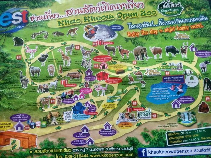 Немного о зоопарках или пара слов о Khao Kheow Open Zoo (Таиланд) зоопарк, Таиланд, Паттайя, развлечения, Животные, длиннопост