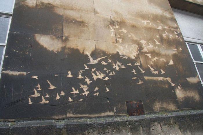 Граффити наоборот Экология, Граффити, Экосфера, Длиннопост, Рисунок на стене, Чистота, Лига художников, Стрит-Арт