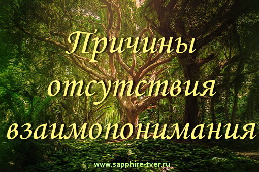 Причины отсутствия взаимопонимания в паре Отношения, Психология, Людмила Меркурьева, Длиннопост