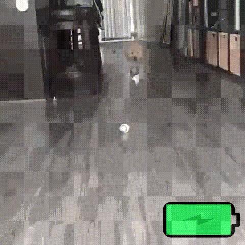 Как работает батарея щенка