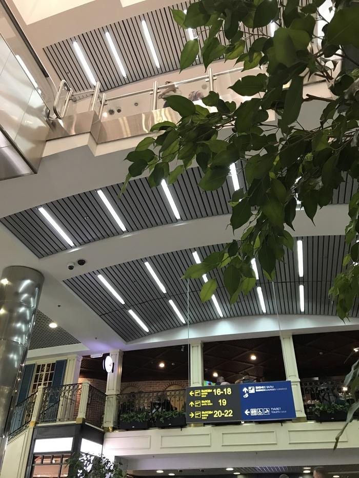 Самый скотский аэропорт Домодедово, Аэропорт, Транспорт