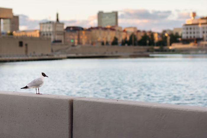 Мимо озера Кабан я без фото не хожу Казань, Озеро Кабан, Фотография, Пейзаж, Длиннопост, Хочу критики