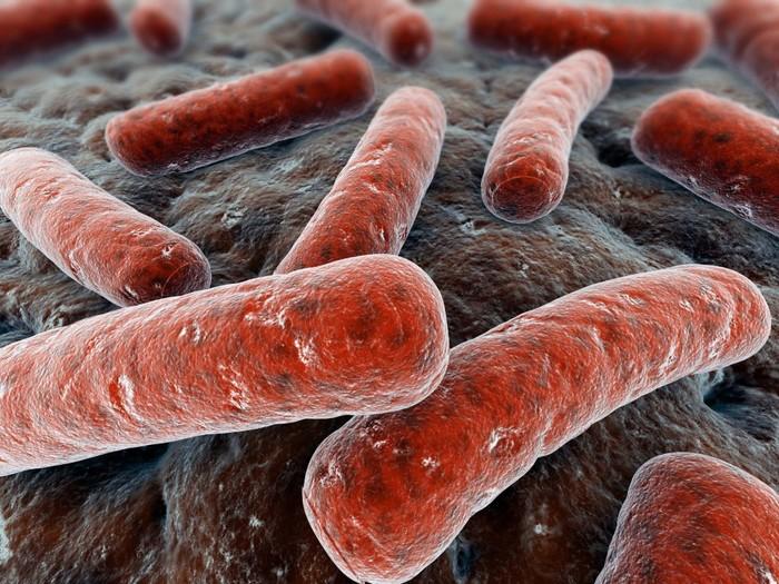 Туберкулез иличахотка Туберкулез, Фтизиатрия, Тубдиспансер, Приказ951, Микобактерии, Гифка, Длиннопост