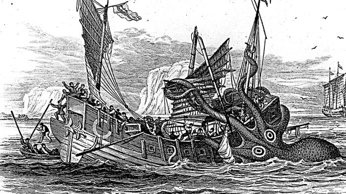 «Они съели мою девушку». Как легенды о морских чудовищах оказались правдой Океан, Чудовища, Кракен, Правда, Видео, Длиннопост
