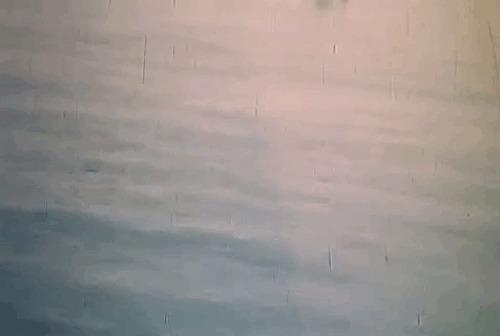 Штурмовка и бомбардировка глазами пилотов Вторая мировая война, Авиация, Самолет, Атака, Хроника, Гифка, Длиннопост