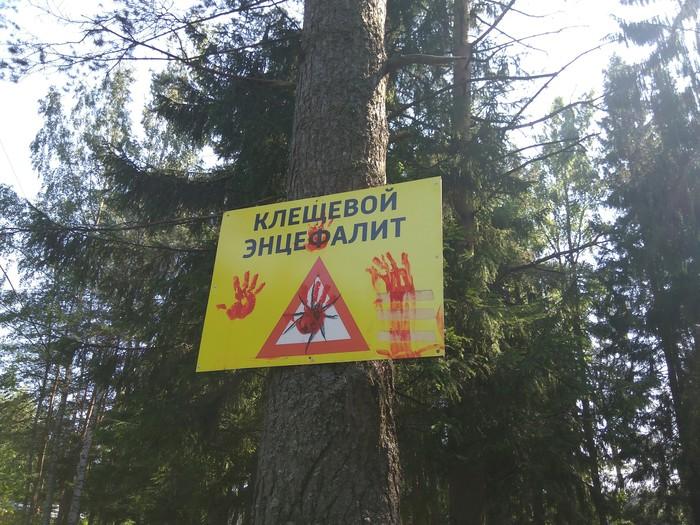 Не ходите, дети, по лесу гулять