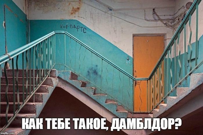 Питерский хогвартс