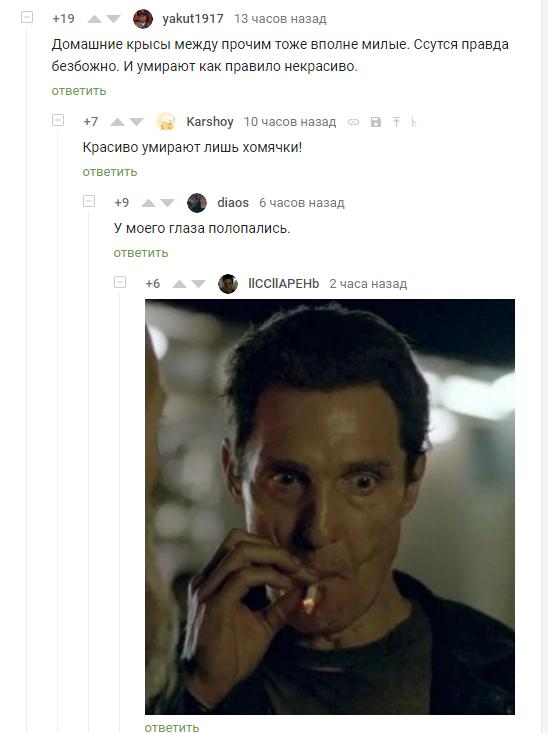 Красиво умирают лишь хомячки Комментарии на пикабу, Скриншот
