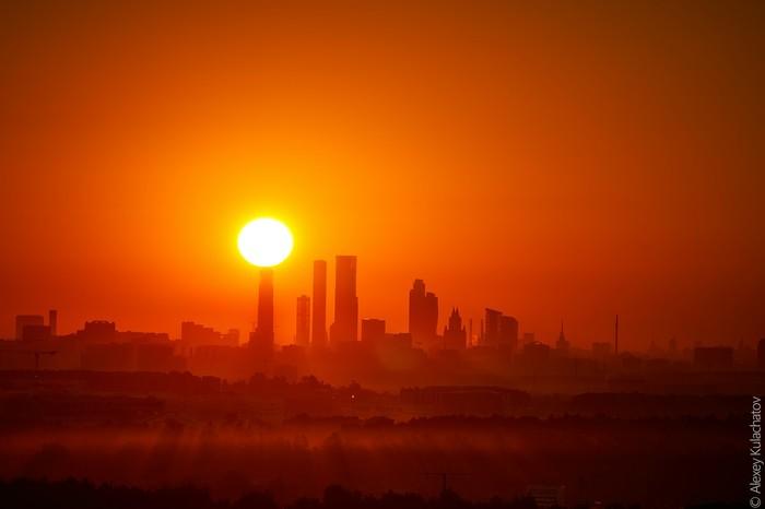 Если ты оптимист Рассвет, Кто рано встает, Кот, Москва-Сити, Одинцово