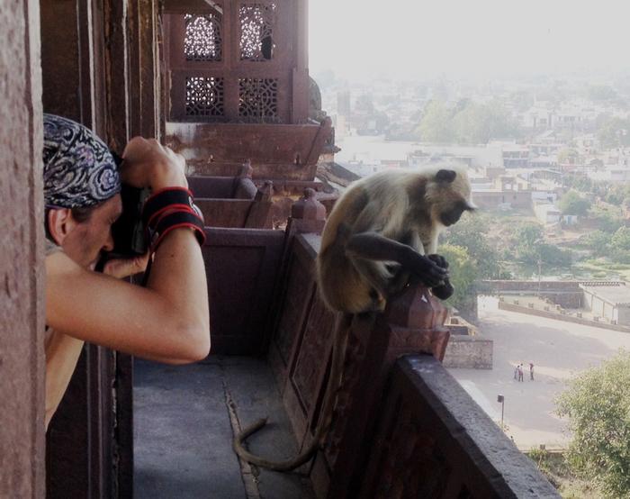 Засранное царство. Индия, Туризм, Некоторое дерьмо, Длиннопост