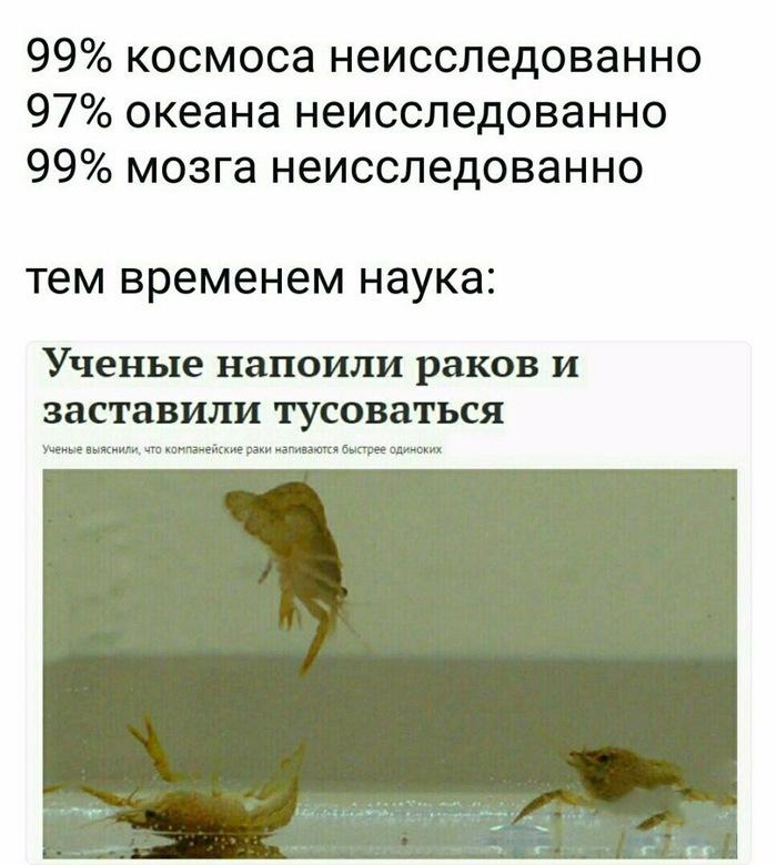 https://cs10.pikabu.ru/post_img/2018/08/08/8/1533735312149830068.jpg