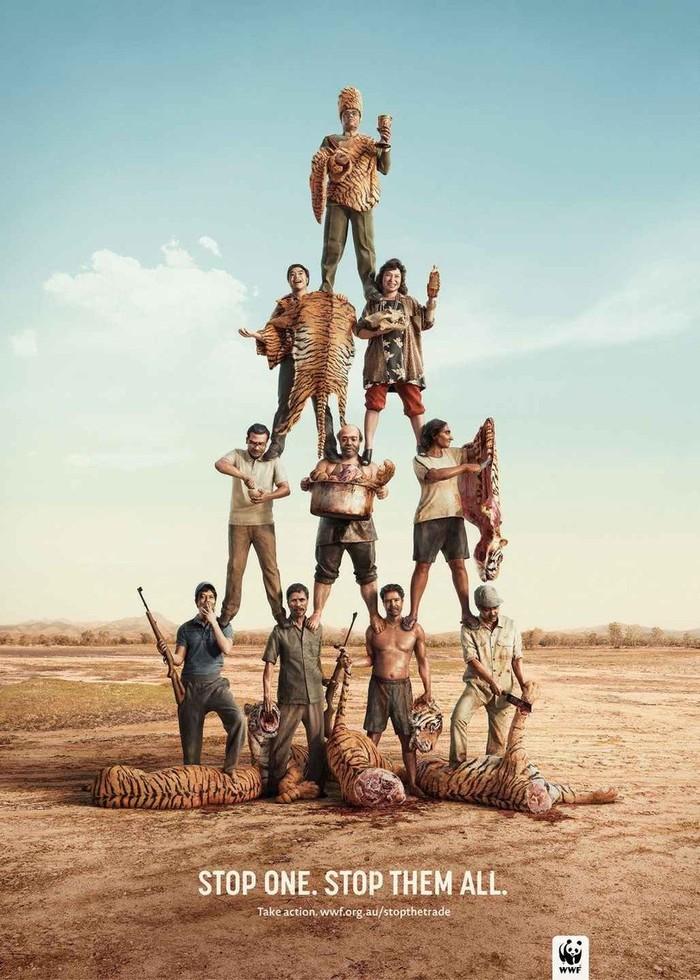 Социальная реклама от WWF Wwf, Реклама, Защита животных, Браконьеры, Животные, Длиннопост