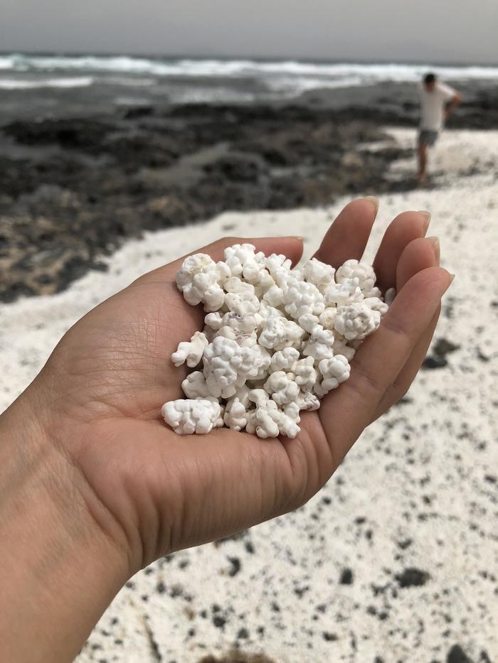 Эти камни на канарском пляже выглядят точь-в-точь как попкорн