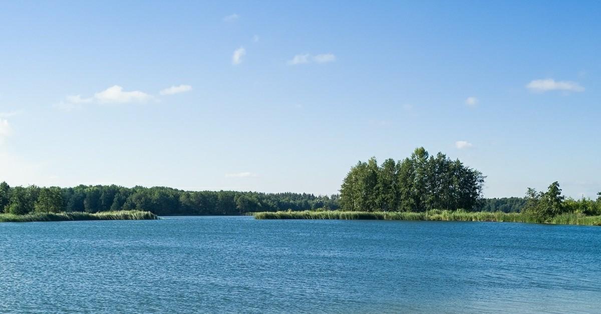 приготуйте силикатные озера липецк фото щуки