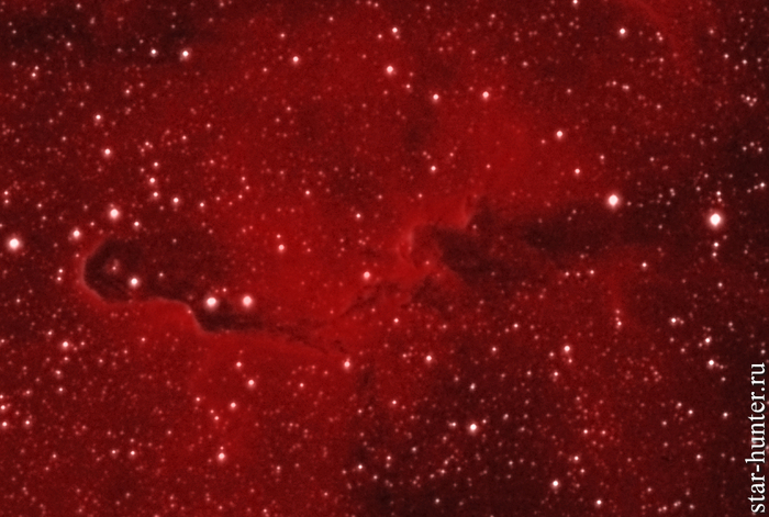 Туманность IC 1396 в созвездии Цефей, 15 августа 2018 года Астрофото, Астрономия, Космос, Туманность, StarHunter, АнапаДвор