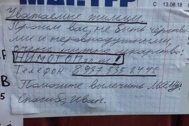 """""""Помогите спасти маму!"""" В Волгограде заметили объявления, разбивающие сердце Регионы, Волгоград, Лекарства, Новости, Негатив"""
