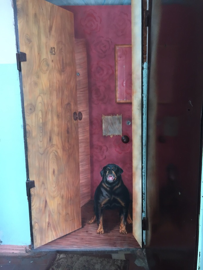 Осторожно злая собака! Хотя погодите... Нижневартовск, Иллюзия, Собака, Дверь