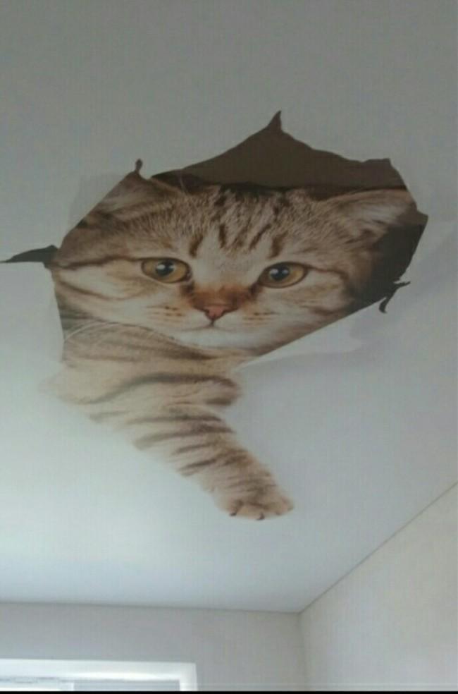 Просто натяжной потолок