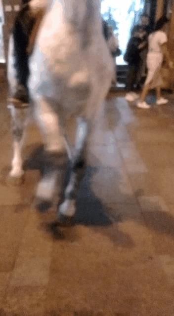 Да, я на коне! Санкт-Петербург, Невский проспект, Всадник, Гифка