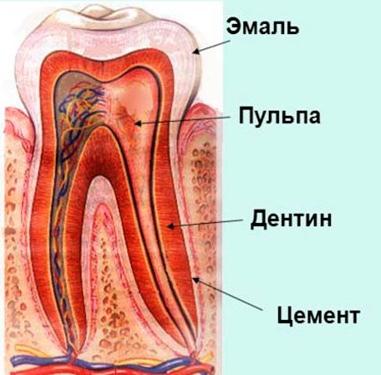 Стоматолог попал в нерв при удалении зуба